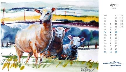 Aprilblatt des Postkartenkalenders ›Schafe 2021‹